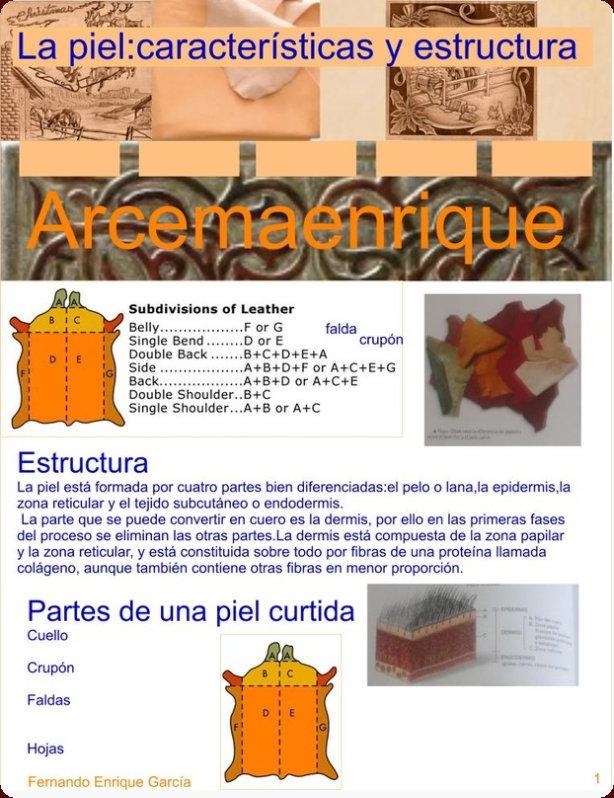 Arcemaenrique Características y Estructura